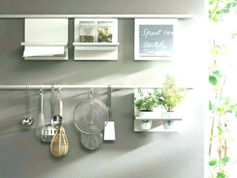 hang the plant together with other kitchen appliances.