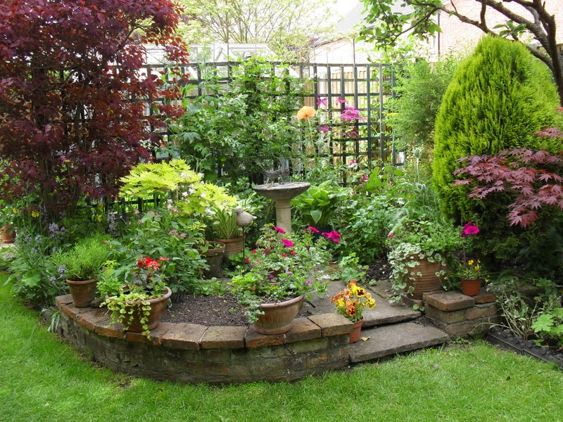 Build a mini garden to make the appearance of the house good.