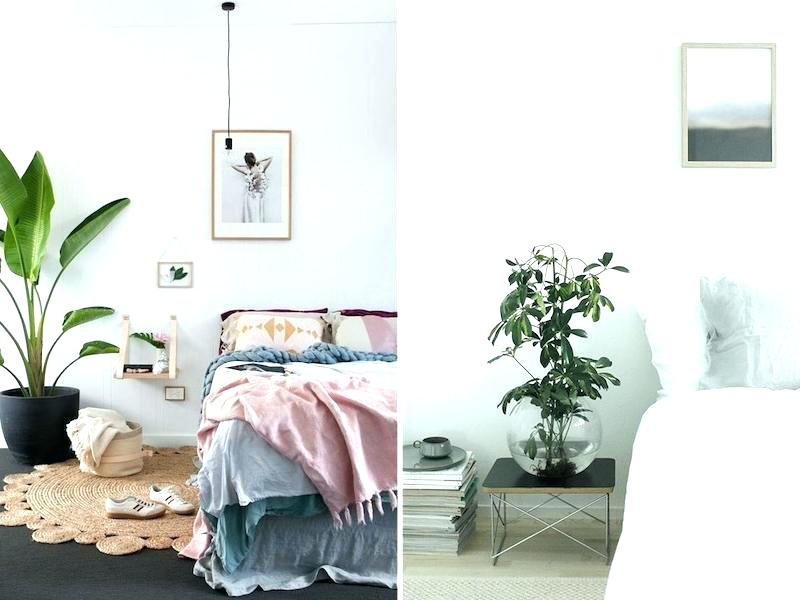 Put the plants behind the bed.