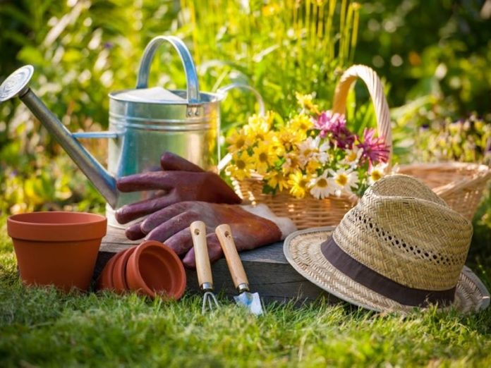 The Great Gardening Tips for Beginners