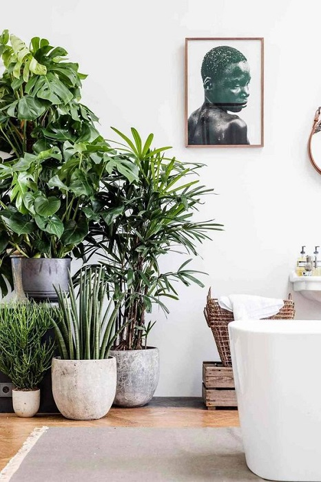 15 Attracting Indoor Garden Apartment Design Ideas Suitable For Small Space