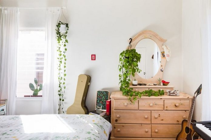 Figure Out Indoor Hanging Plants For Bedroom Ideas Complete The Smart Tips