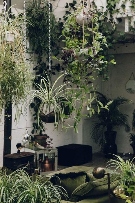 Indoor Tropical Interior Design Ideas