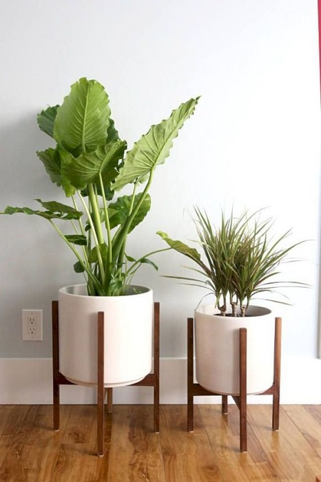 15 Modern Wood Leg Standing Planter Decor Ideas Will Beautifying Your Indoor Garden