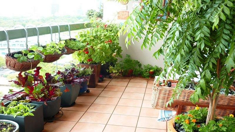 The Best 10 Cozy Balcony Garden Design Ideas | Simdreamhomes