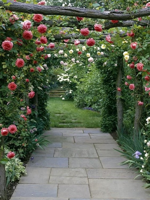 How To Create A Secret Garden Design Ideas In Backyard? Get Inspiring Tips Here