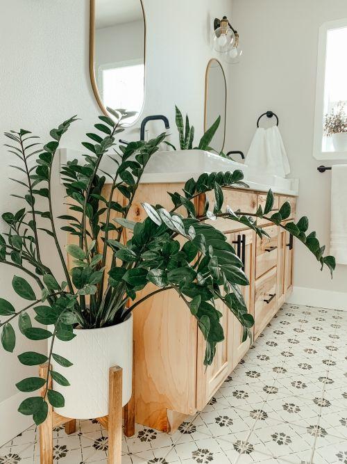 cozy bathroom with plants decorations