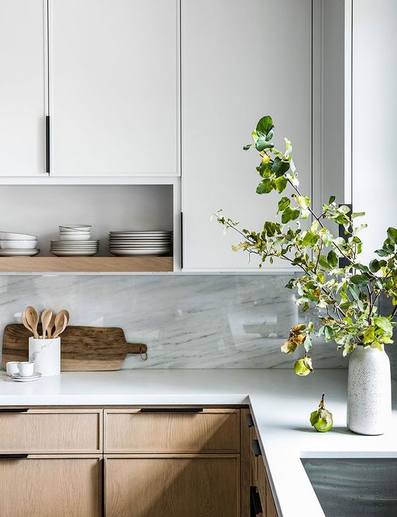 fresh kitchen with plants