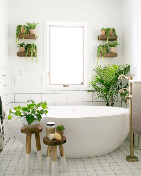 fresh and simple bathroom decors