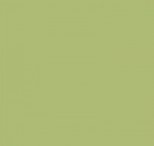 asparagus green color