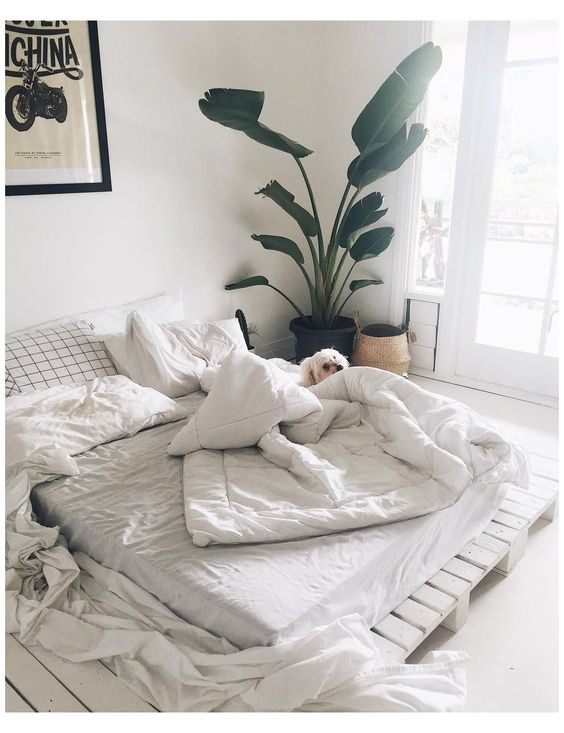 cozy simple bedroom decor