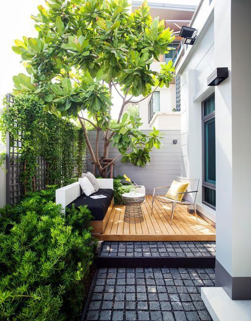 small garden with big tree