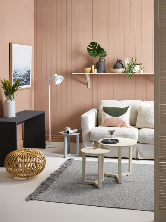 soft brown color for interior