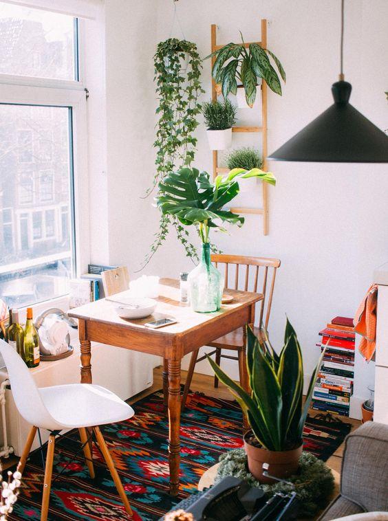 plant dining room decor