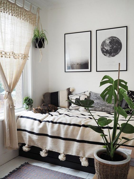 plant for spring bedroom decor