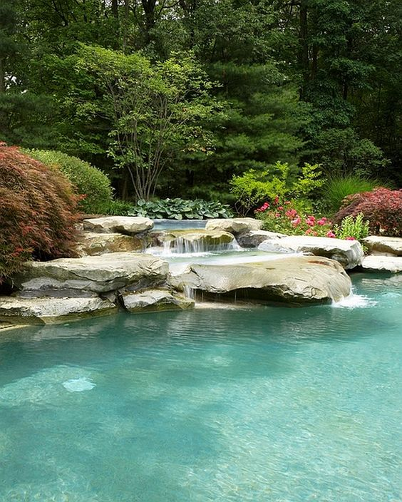 nature swimming pool