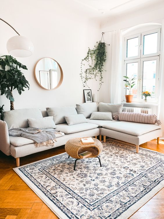 hanging plant for living room